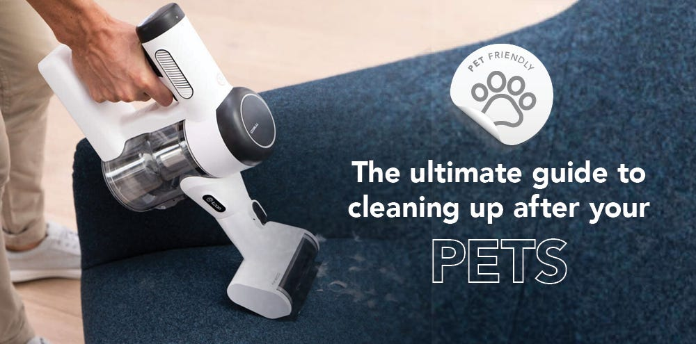 The ultimate guide to cleaning up after your pets