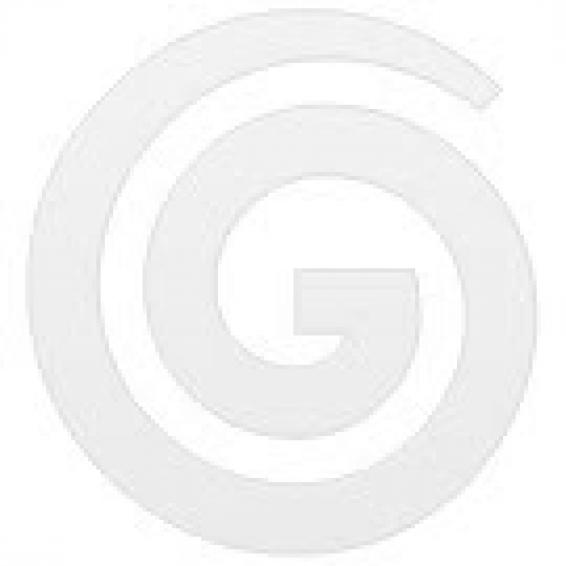 Pullman 1.5m Aluminium Mop Handle Green