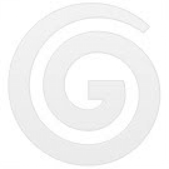 Pullman Mop Bucket (16L) Green  - Godfreys