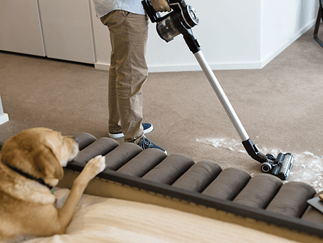 Pet Vacuums