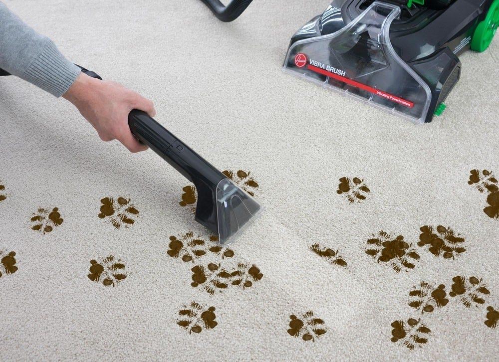 Hoover Vibra Brush Carpet Shampooer